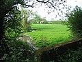 The Slod Brook - geograph.org.uk - 170090.jpg