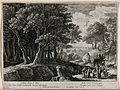 The birth of Adonis. Etching by H. van Swanevelt. Wellcome V0048196.jpg