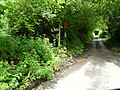 The foot path to Boode on the left of Buttercombe Lane - geograph.org.uk - 828426.jpg