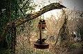 The lamp - panoramio.jpg