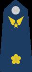 Thiếu Úy-Airforce 1.png