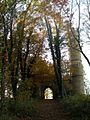 Through the woods to the castle folly - geograph.org.uk - 1054558.jpg