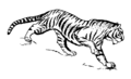 Tiger (PSF).png