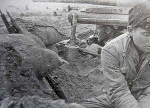 Type L grenade - Image: Tipo L