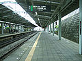 Tokyu-railway-Miyazakidai-station-platform.jpg