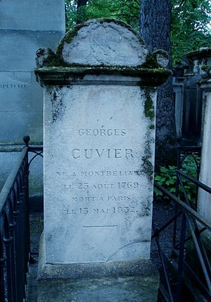 Georges Cuvier - Cuvier's tomb in the Père Lachaise Cemetery, Paris
