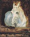 "Toulouse-Lautrec - Der Schimmel ""Gazelle"".jpeg"