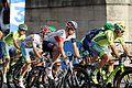 Tour de France 2016 Stage 21 Paris Champs-Elysées (28516741436).jpg