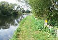 Towpath on the River Soar - geograph.org.uk - 554853.jpg
