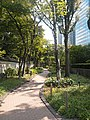 Toyota Tokyo Building, Greenway01.jpg