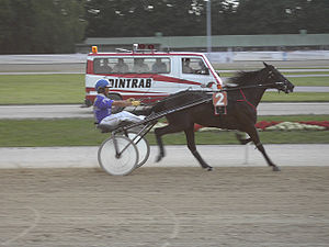 Driving (horse) - Harness racing