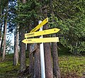 Trail signs in forest.jpg