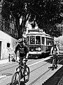 Tranvía y ciclistas (3646750960).jpg