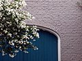 Tree, Door (New Orleans, LA) (6017947384).jpg