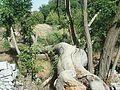 Tree trunk lying down - panoramio.jpg