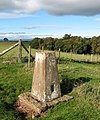 Trig point at 123m - geograph.org.uk - 1013427.jpg