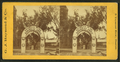 Triumphal arch, Charlestown, 17th June, 1875, by G.J. Raymond & Co..png