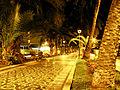 Tropical City Streets at Night.jpg