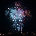 Tsuchiura Fireworks Competition 2011 a.jpg