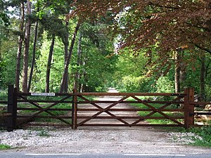 Tumby, Lincolnshire - Fulsby Wood