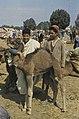 Tunis1960-124 hg.jpg