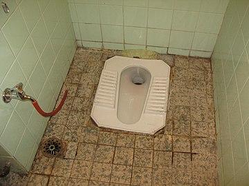 Toilet paper or bidet 360px-Typical_toilet_in_urban_Syria-_flush_toilet_squatting_pan_%283232388550%29