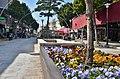 Ulice plné květin - panoramio.jpg