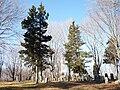 Underhill Burying Ground.jpg