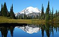 Upper Tipsoo Lake reflection.jpg