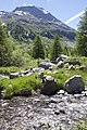 Vadret da Morteratsch - panoramio (42).jpg