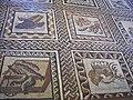 Vatican Museum mosaic.jpg