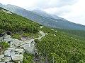 Velická dolina, Vysoké Tatry, 2012, 003.JPG