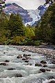 Ventisquero Yelcho Trail 2, Corcovado National Park, Chile.jpg
