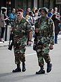 Veterans Day Boston 2014 (15592540988).jpg