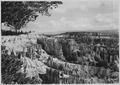 View north along rim from Sunrise Point. Sunset Point at left. Queen's Garden and Queen's Castle in middle distance.... - NARA - 520243.tif