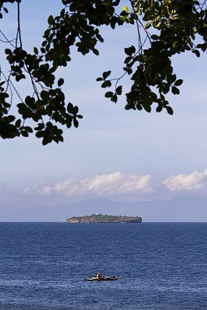 Pescador Island - View of the island, taken from Panagsama Beach