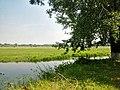 View of Trubizh River near field in Pereiaslav-Khmelnytskyi.jpg