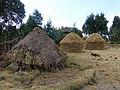 Village au centre de l'Ethiopie (3).jpg