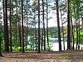 Vilnius. Green Lakes - panoramio (1).jpg