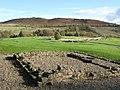 Vindolanda - geograph.org.uk - 599826.jpg