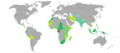 Visa requirements for Gabonese citizens.png