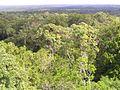 Vista Desde Templo V - panoramio.jpg