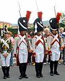 Vitoria - Recreación histórica de la Batalla de Vitoria, bicentenario 1813-2013 205.jpg