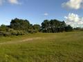 Vlakte van Waalsdorp (Waalsdorpervlakte) 2016-08-10 img. 567.png