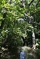 Würm im Pasinger Stadtpark.JPG