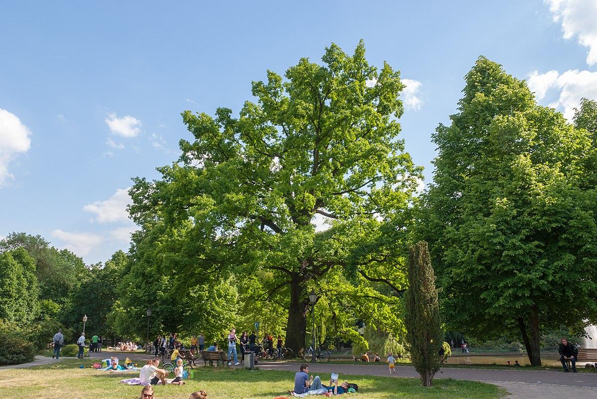 WLE 2015, Berlin (20150525-DSC05307).jpg