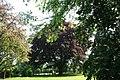 Wabcz park dworski 2012 05 23 fot K Lewandowski 0404.JPG