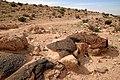 Wadi-zin-felszeichnungen-02.jpg