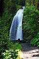 Wahkeena Falls (Multnomah County, Oregon scenic images) (mulDA0038a).jpg