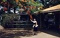 Waipahu Post Office 1959.jpg